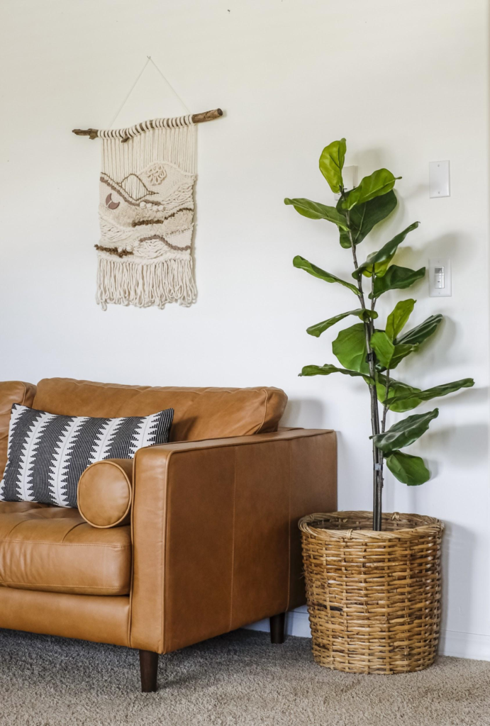 fig-tree-decor